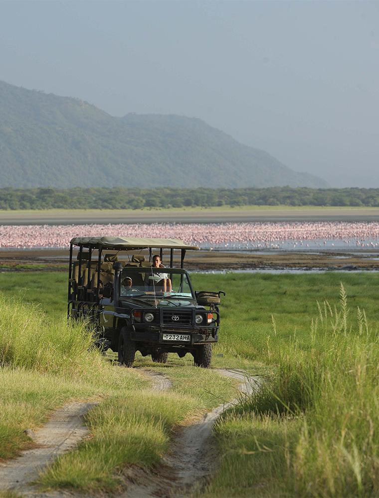 Image d'illustration de Parc National du Lac Manyara